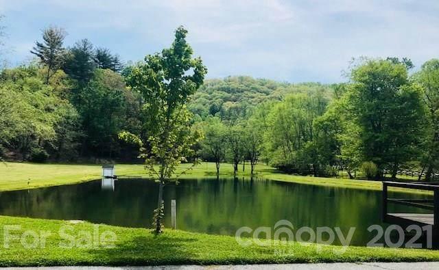 53 Tudor Crescent Court, Hendersonville, NC 28739 (#3389110) :: High Vistas Realty