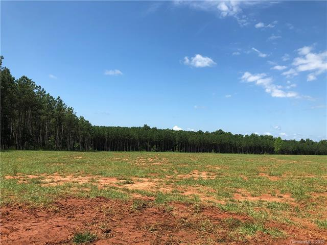 000 Garvin Road, Mcconnells, SC 29726 (#3395296) :: Carlyle Properties