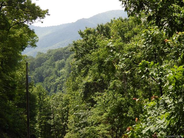 Lot 334 Paso Fino Drive, Maggie Valley, NC 28751 (#3397850) :: Puffer Properties