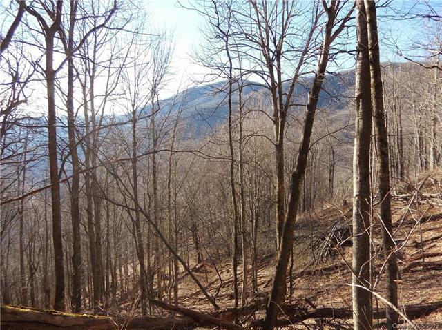 Lot 3 off Braves Knob Road, Maggie Valley, NC 28751 (#3398080) :: LePage Johnson Realty Group, LLC