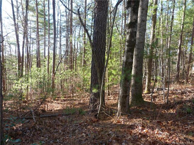 Lot 1 Laura Trace #1, Hendersonville, NC 28792 (#3400324) :: Carlyle Properties