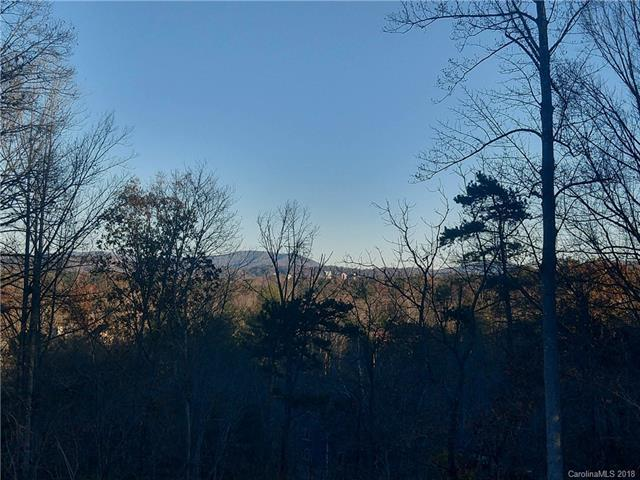 30 Timber Moss Drive #49, Asheville, NC 28804 (#3407690) :: Rinehart Realty