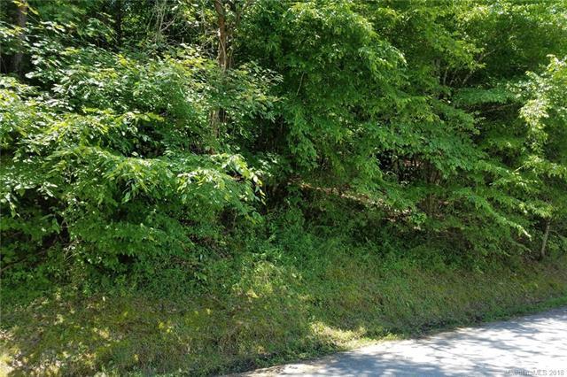 0 Pheasant Street #61, Lake Lure, NC 28746 (#3409474) :: Stephen Cooley Real Estate Group