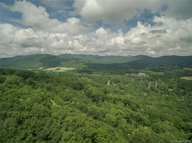 222 Secluded Hills Lane #40, Arden, NC 28704 (#3409638) :: RE/MAX Four Seasons Realty