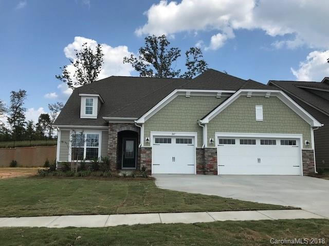 247 Kentmere Lane #48, Lake Wylie, SC 29710 (#3412839) :: The Andy Bovender Team