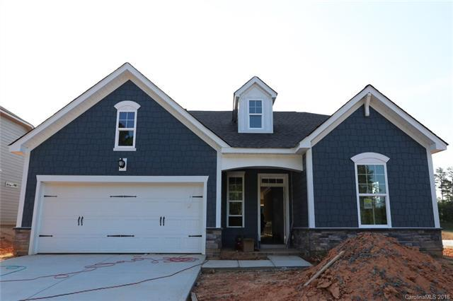 14209 Goldenrod Trace Road, Charlotte, NC 28278 (#3412890) :: LePage Johnson Realty Group, LLC