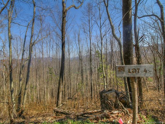 Lot 4 Chimney Laurel Drive #4, Asheville, NC 28804 (#3414489) :: RE/MAX Four Seasons Realty