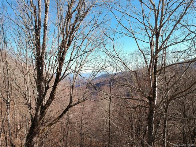 Lot 47 Black Bear Run, Mars Hill, NC 28754 (#3414856) :: MartinGroup Properties
