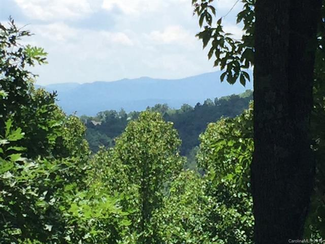 Lot 98 Starling Pass, Asheville, NC 28804 (#3416504) :: Besecker Homes Team