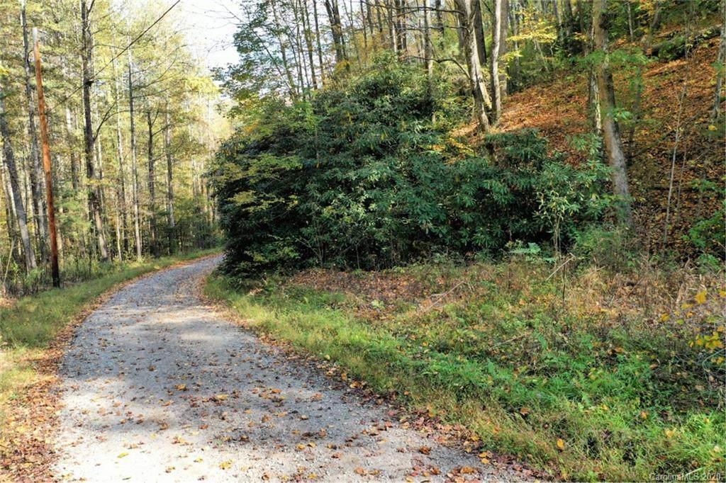 VL73 Mountain Forest Estates - Photo 1