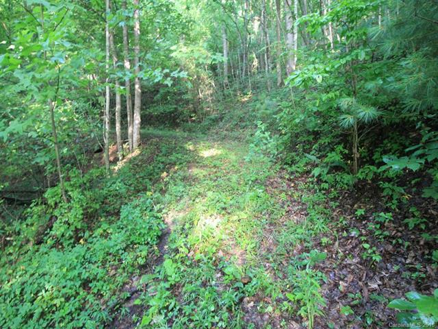 0000 N Mountain View Road, Burnsville, NC 28714 (#3426863) :: Carlyle Properties