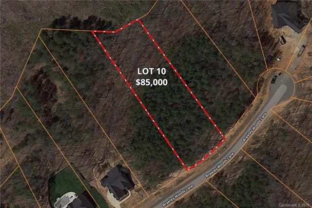 137 Brawley Woods Lane #10, Mooresville, NC 28115 (#3427002) :: Mossy Oak Properties Land and Luxury