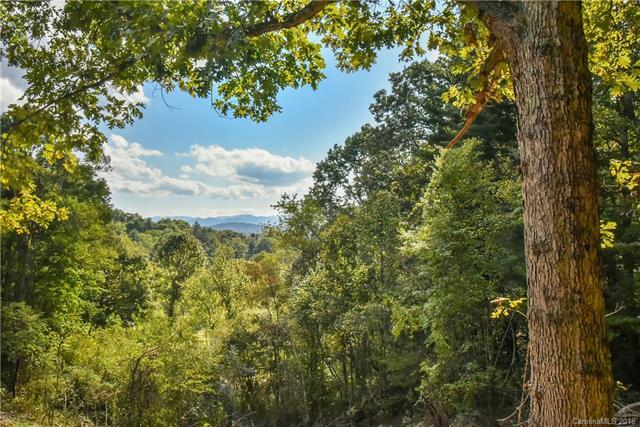 192 Mostert Drive Lot 1, Asheville, NC 28804 (#3427763) :: The Premier Team at RE/MAX Executive Realty