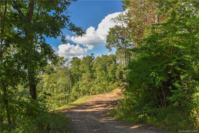 99999 Mostert Drive Lot 25, Asheville, NC 28804 (#3427844) :: Charlotte Home Experts