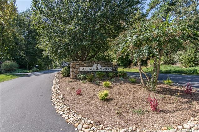 8436 Marina Lane #64, Catawba, NC 28609 (#3427949) :: Team Southline