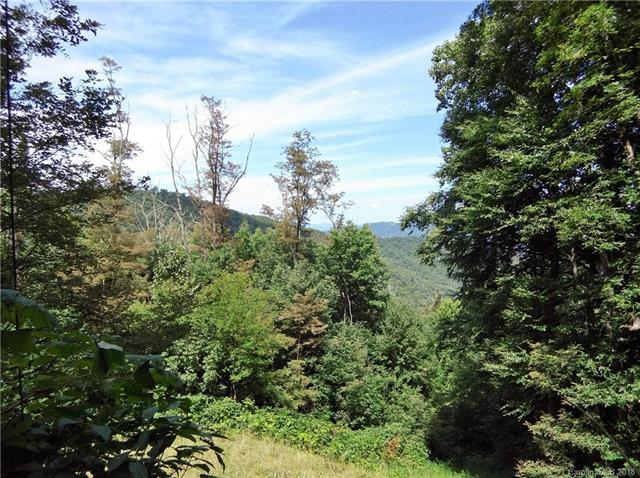 Lot 232 Tannehill Lane, Waynesville, NC 28786 (#3429724) :: High Performance Real Estate Advisors