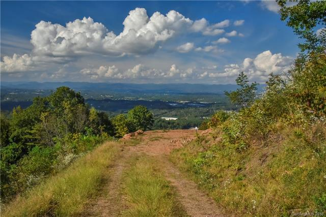 174 Serenity Ridge Trail Lot 8, Asheville, NC 28804 (#3434030) :: Team Southline