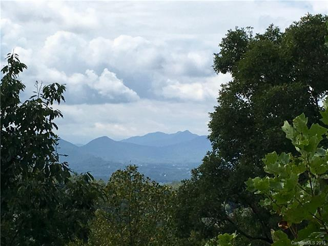 999 Waxwing Way #15, Asheville, NC 28804 (#3434586) :: Exit Mountain Realty