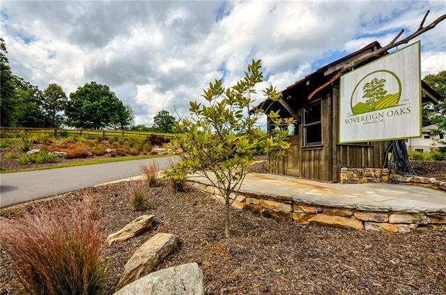 8 Brookridge Lane, Asheville, NC 29681 (#3434941) :: LePage Johnson Realty Group, LLC