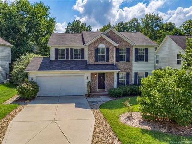 9824 Dauphine Drive, Charlotte, NC 28216 (#3435526) :: The Temple Team