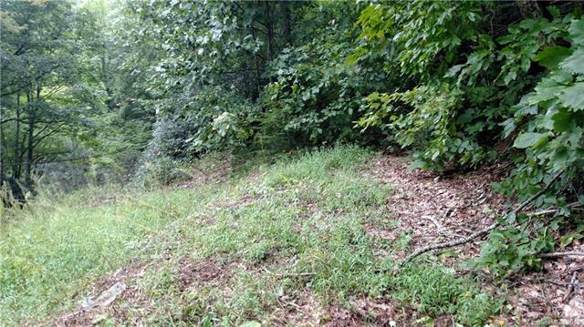 0000 Little Creek Road, Hendersonville, NC 28792 (#3435849) :: Johnson Property Group - Keller Williams