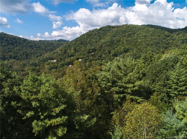 36 Elk Mountain Ridge, Asheville, NC 28804 (#3437787) :: Cloninger Properties