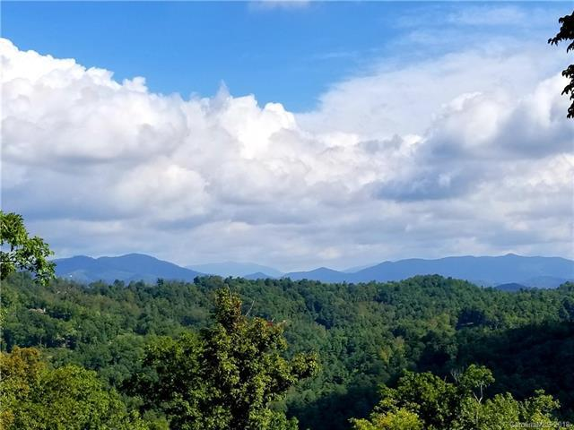 130 Summit Tower Circle, Asheville, NC 28804 (#3438576) :: High Performance Real Estate Advisors