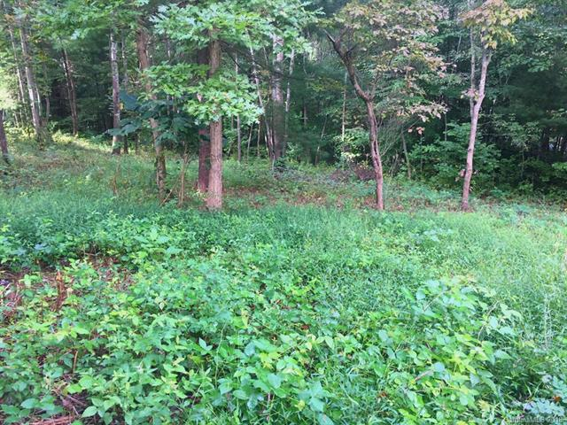 26 Owlet Drive, Weaverville, NC 28787 (#3439051) :: Mossy Oak Properties Land and Luxury