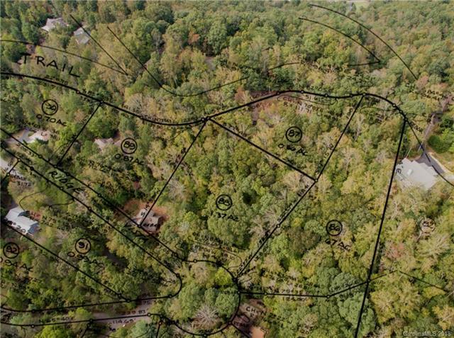 9999 Buffalo Trail #86, Asheville, NC 28805 (#3439707) :: LePage Johnson Realty Group, LLC