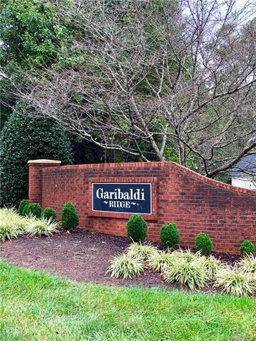 1072 Garibaldi Ridge Court, Belmont, NC 28012 (#3441720) :: LePage Johnson Realty Group, LLC
