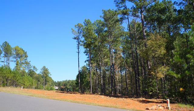 6005 Chimney Bluff Road #12, Lancaster, SC 29720 (#3441921) :: MartinGroup Properties