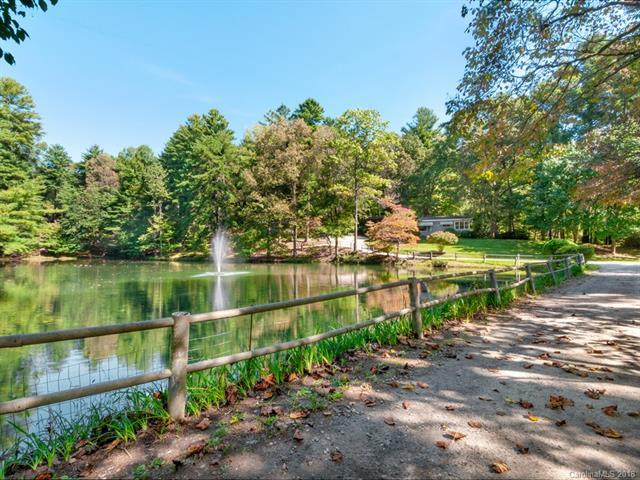 5 Lakemont Cottage Trail, Flat Rock, NC 28731 (#3442155) :: RE/MAX Four Seasons Realty