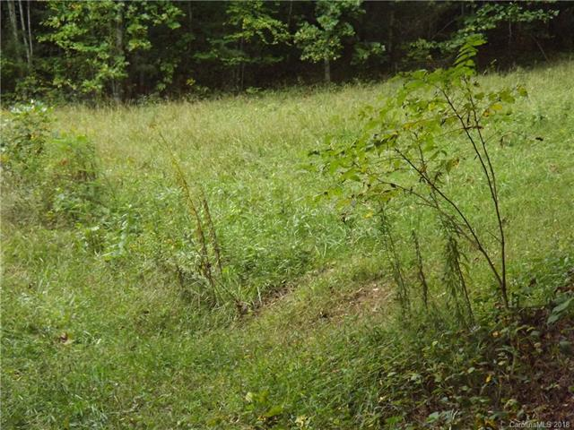 E Winding Branch Trail - Photo 1