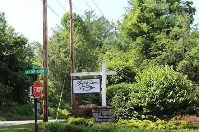 574 Skytop Farm Lane Lot 14, Hendersonville, NC 28791 (#3444690) :: Rinehart Realty