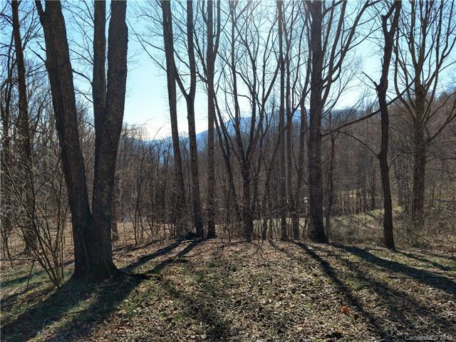 Lot 5 Sage Lane, Waynesville, NC 28785 (#3445754) :: Washburn Real Estate