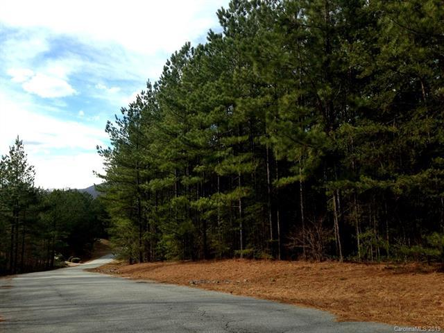 11 Sunset Drive #11, Mill Spring, SC 28756 (#3446134) :: Stephen Cooley Real Estate Group