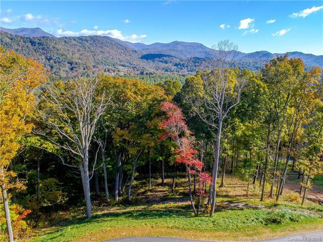 175 Wandering Oaks Way #90, Asheville, NC 28805 (#3446902) :: Rinehart Realty