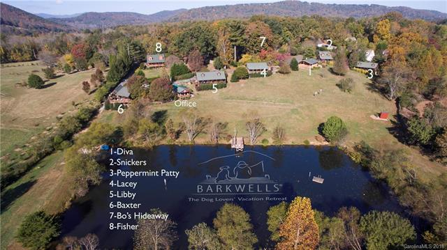 290 Lance Road, Mills River, NC 28759 (#3446968) :: IDEAL Realty