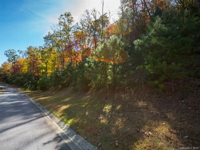 Lot 118 May Fly Lane, Mills River, NC 28742 (#3447357) :: Mossy Oak Properties Land and Luxury