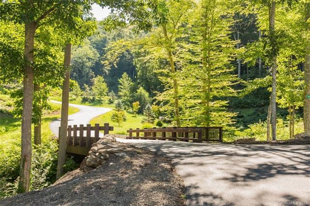 14 Bartrams Walk Drive #2, Asheville, NC 28804 (#3447358) :: Exit Mountain Realty