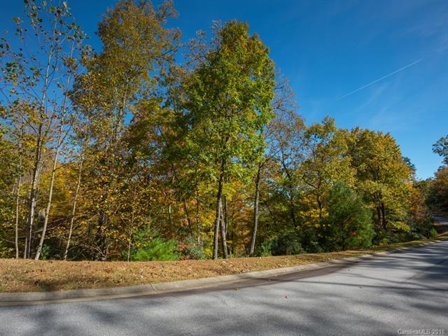 Lot 98 May Fly Lane, Mills River, NC 28742 (#3447366) :: LePage Johnson Realty Group, LLC