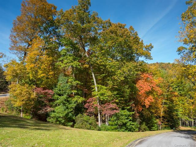 Lot 96 May Fly Lane, Mills River, NC 28742 (#3447377) :: LePage Johnson Realty Group, LLC