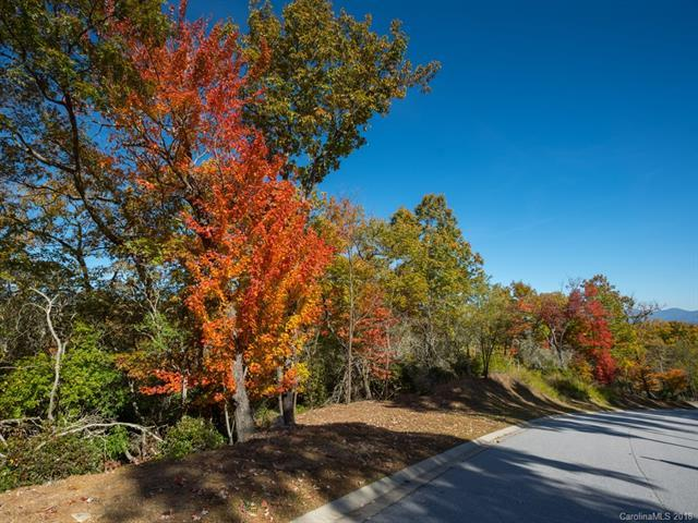 Lot 113 Blue Mountain Way, Mills River, NC 28742 (#3447397) :: LePage Johnson Realty Group, LLC