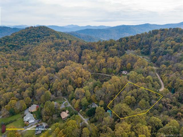 #404 Kitty Lane, Waynesville, NC 28785 (#3448138) :: Puffer Properties