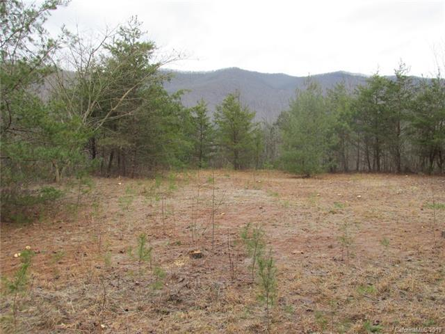 SR1254 Buffalo Road - Photo 1
