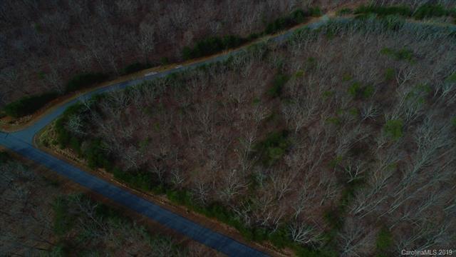1295 Sierra Trace Road #177, Denton, NC 27239 (#3450717) :: MartinGroup Properties