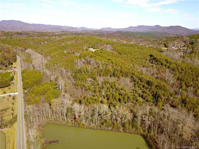 000 Bills Creek Road, Lake Lure, NC 28746 (MLS #3451335) :: RE/MAX Journey