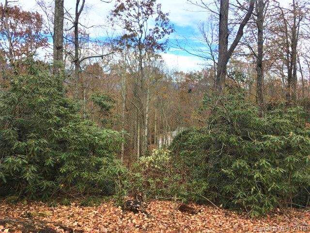 29 Skye Drive #29, Pisgah Forest, NC 28768 (#3453957) :: LePage Johnson Realty Group, LLC