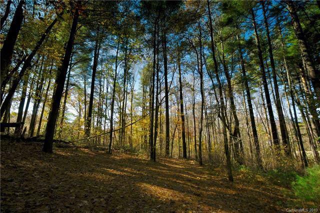 31 Deep Creek Trail - Photo 1