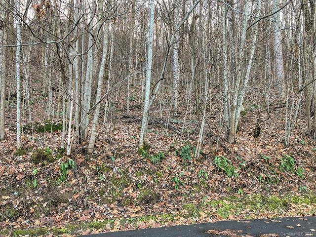 00 Silver Maple Lane, Waynesville, NC 28786 (#3455173) :: Rinehart Realty